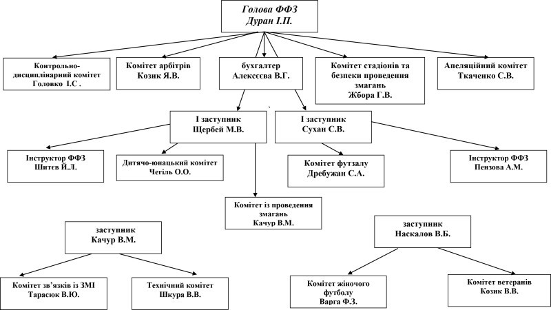 Структура ФФЗ