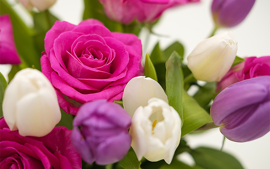 bouquet-3158350